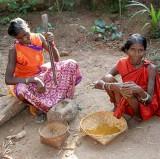 India tribal Orissa, Dharua tribe