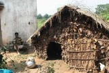 Traditional and government given house in Birhor  village Chateni