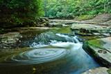 swirls in the stream