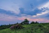 deepening twilight
