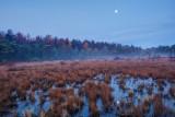 full moon over the marsh