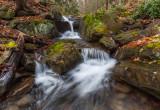 mountain streams 2014