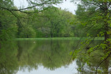 Pinetum Lake