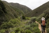 March 29  - Hike at Garrapata State Park