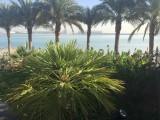 160326 Al Muneera Promenade - 001.jpg