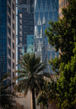 161230 Abu Dhabi Corniche - 019-Edit-Edit.jpg