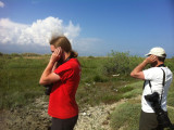 Eric and Johan listening for acrocephalus