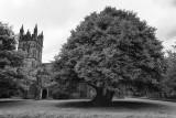 Church of Dartington