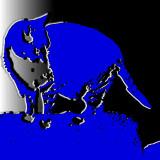 El gato que está triste y azul