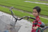 _1988. Rizieres au Nord Est d'Hanoi.jpg