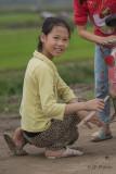 Rizières près d'Hanoi