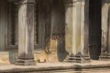 _3561 Angkor Vat.jpg