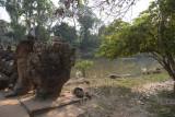 3310 Preah Khan.jpg