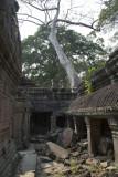 3331 Preah Khan.jpg