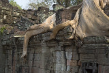 3338 Preah Khan.jpg
