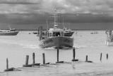 Le Port du Pavé (à regarder en mode original)
