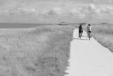 Promenade au Nord de La Rochelle