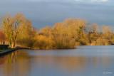 Le Marais d'Isle
