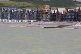Mers-les-Bains vue du Tréport