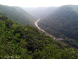 New River Gorge; Fayette Co., WV