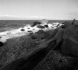 Horton Point / driftwood  40mm