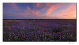 Schulenburg - Sunset