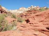 LB137834_calf creek hike.jpg