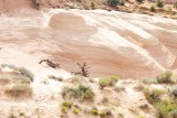 LB147976 escalante desert flat light.jpg