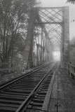 bridge fog albany_tn.jpg