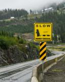 Caution Endangered Species Sign