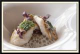 Blanc de turbot, fenouils braisés, poivron et quinoa noir de bolivie, tartare d'huitres, emulsion de coriandre frais