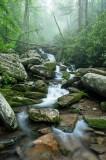 Le Conte Creek 2