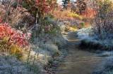 Graveyard Fields Trail 4