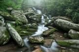 Le Conte Creek 1