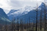 Glacier National Park 11