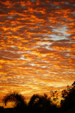346-365 130520 Sunrise 050 sm.jpg