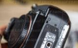 DSC09298 Sony A900.jpg