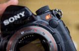 DSC09301 Sony A900.jpg