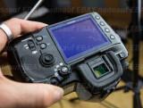 DSC09310 Sony A900.jpg