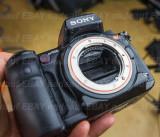 DSC09318 Sony A900.jpg