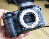 DSC09320 Sony A900.jpg