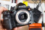DSC09325 Sony A900.jpg