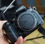 DSC09314 Sony A900.jpg