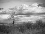 20130513_Alberta BC_0156.jpg