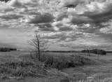 20130627_Alberta_0032.jpg
