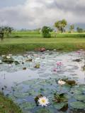 20130929_Laos_0319.jpg