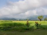 20130929_Laos_0380.jpg
