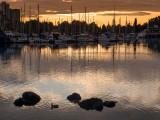 20131012_Vancouver_0057.jpg