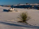 20140101_White Sands_0311.jpg