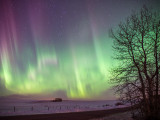 20140219_Northern Light_0021.jpg